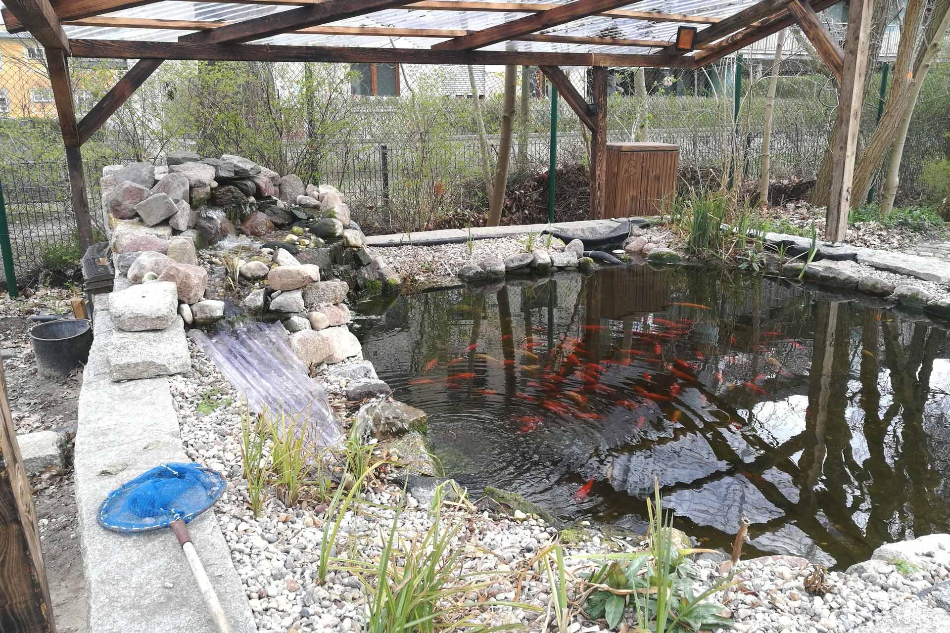 Fischteich im Casinogarten
