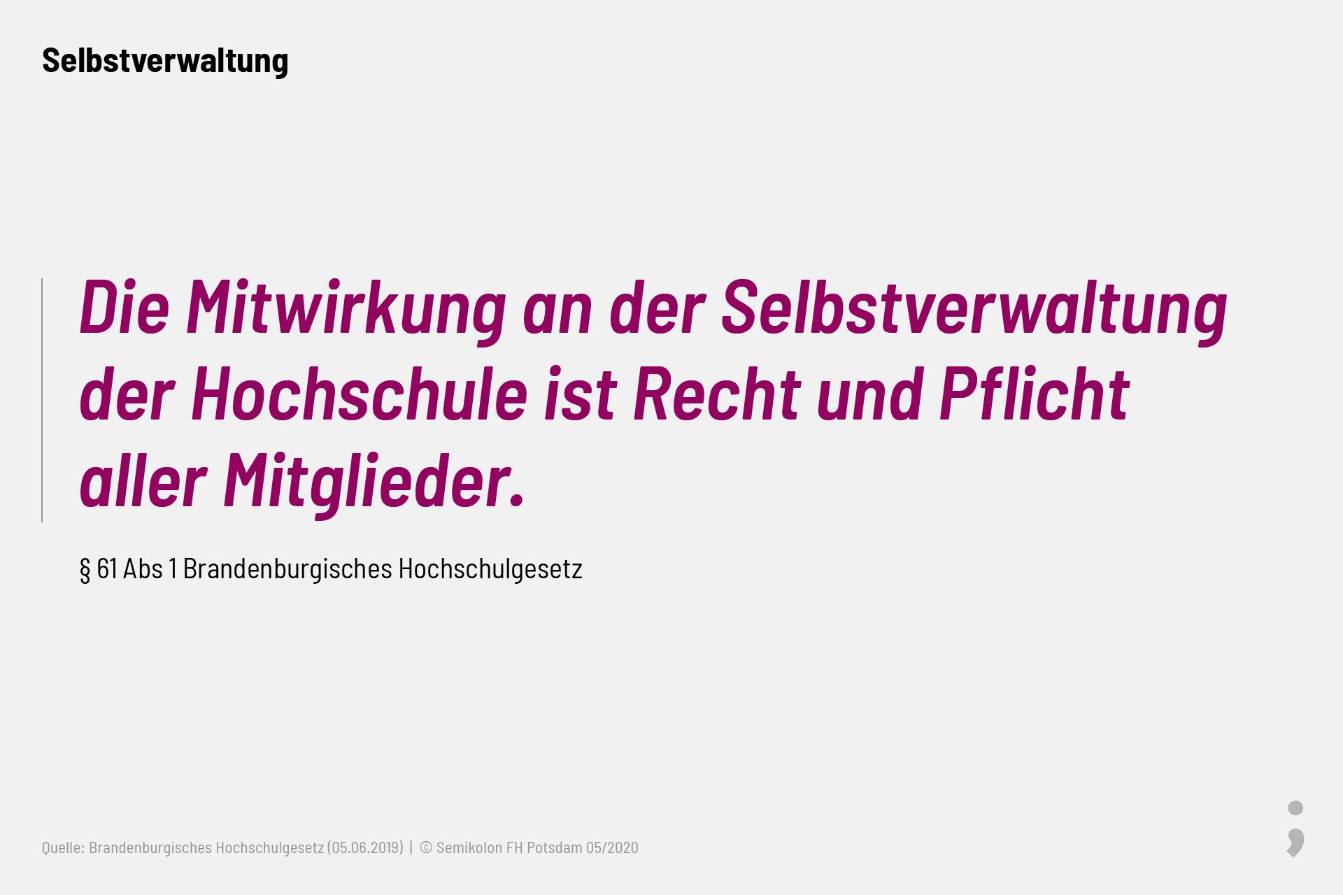 Die Mitwirkung an der Selbstverwaltung der Hochschule ist Recht und Pflicht aller Mitglieder. Brandenburgisches Hochschulgesetz