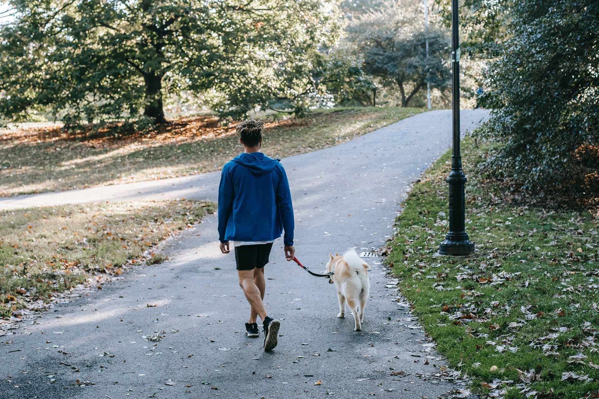 Eine Person läuft mit einem Hund an der Leine durch einen Park